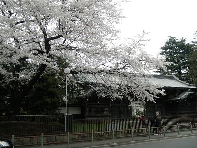 上野公園 黒門